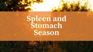 Late Summer - Stomach and Spleen Season